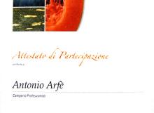 Antonio Arfè Primo Trofeo Antonio Sorrentino